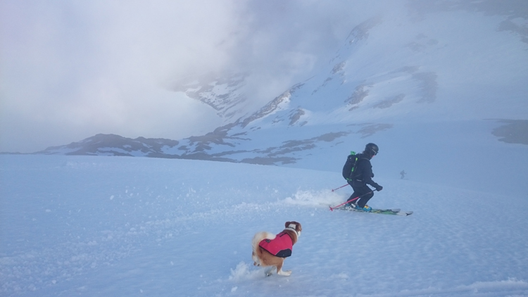 Skiing and running down