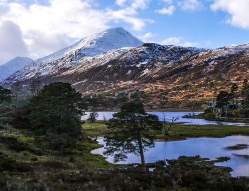 Glen Affric (Strawberry Cottage)  – Trip 2, 15-17 Mar 2019
